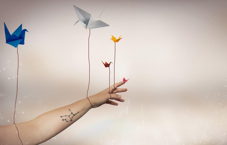 Photo wallpaper background, hand, cranes