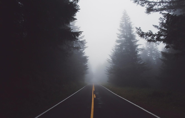 Photo wallpaper road, forest, nature, fog, haze