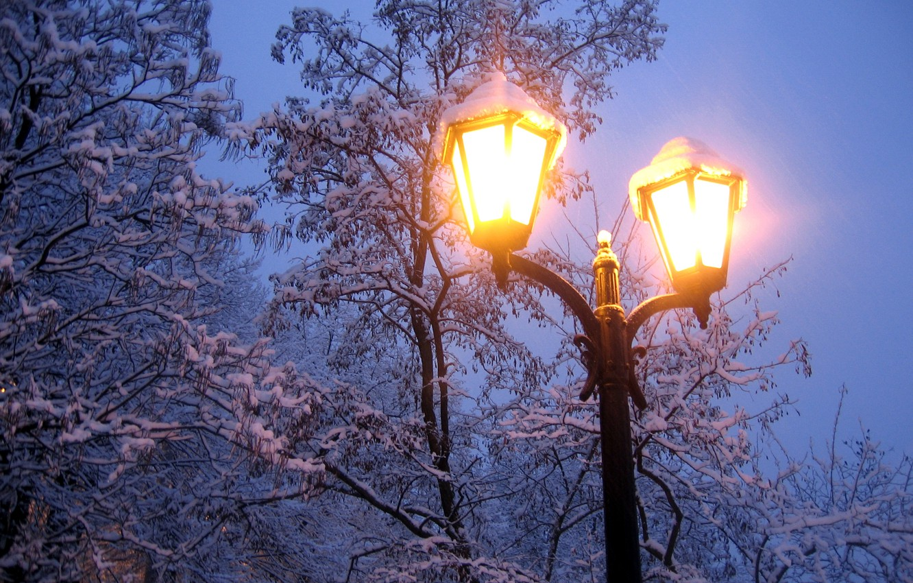 Photo wallpaper cold, winter, light, snow, trees, branches, nature, the evening, frost, lantern
