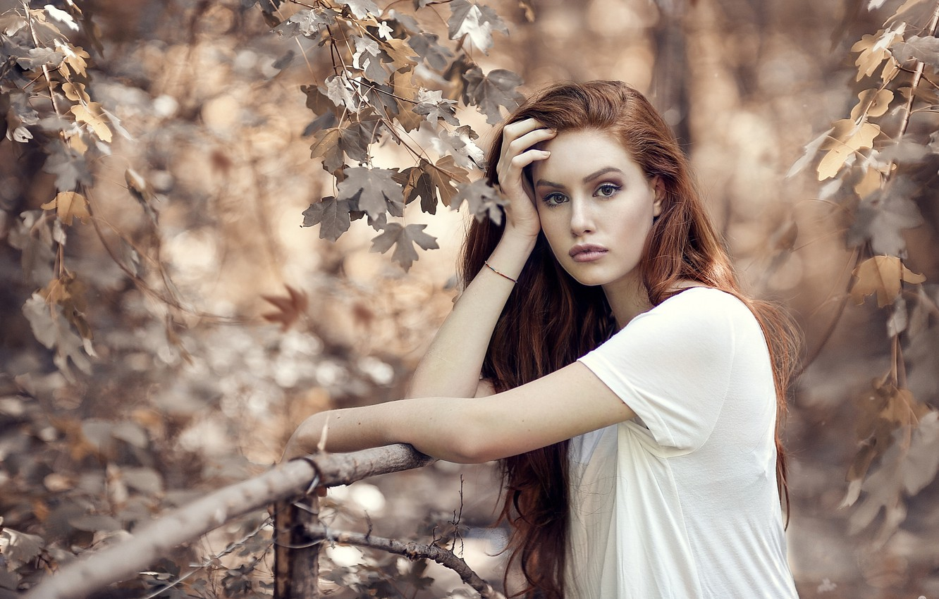 Photo wallpaper autumn, look, leaves, girl, branches, nature, maple, red, Alessandro Di Cicco