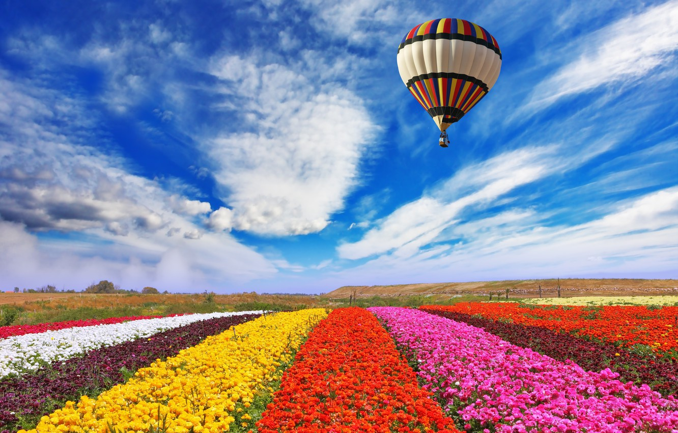 Photo wallpaper field, the sky, clouds, flowers, nature, balloon