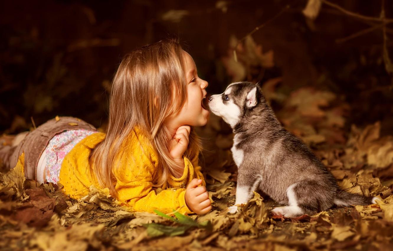 Photo wallpaper child, dog, girl, puppy, friends, husky