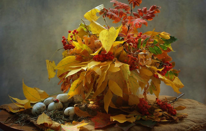 Photo wallpaper autumn, leaves, mushrooms, bouquet, still life, Rowan, mushrooms