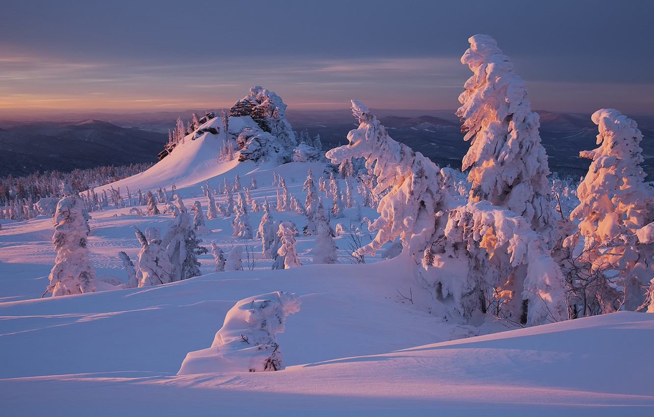 Photo wallpaper winter, forest, snow, sunset, nature