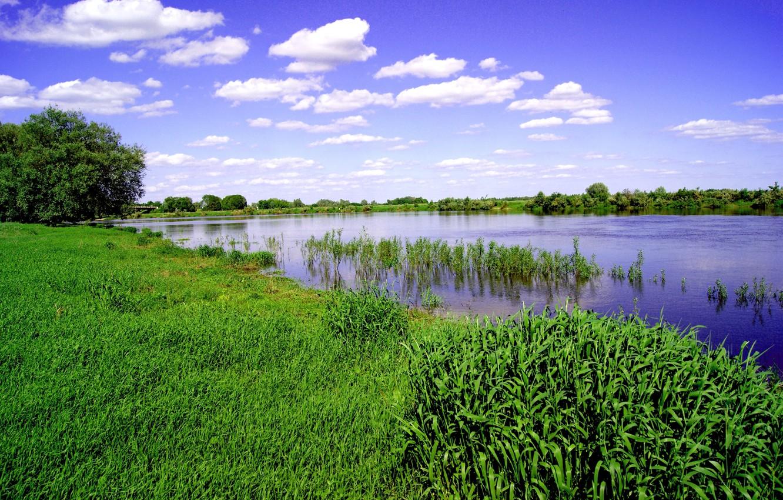 Photo wallpaper the sky, grass, river