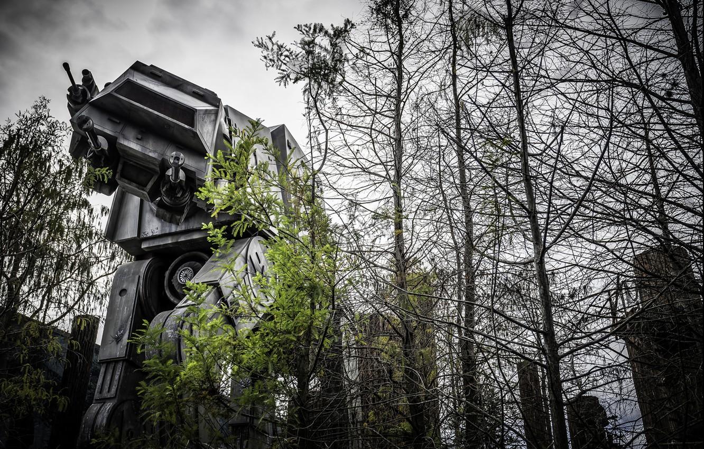 Wallpaper Forest Robot Large Star Wars Combat Photo Photographer Greg Stevenson Star Wars Images For Desktop Section Fantastika Download