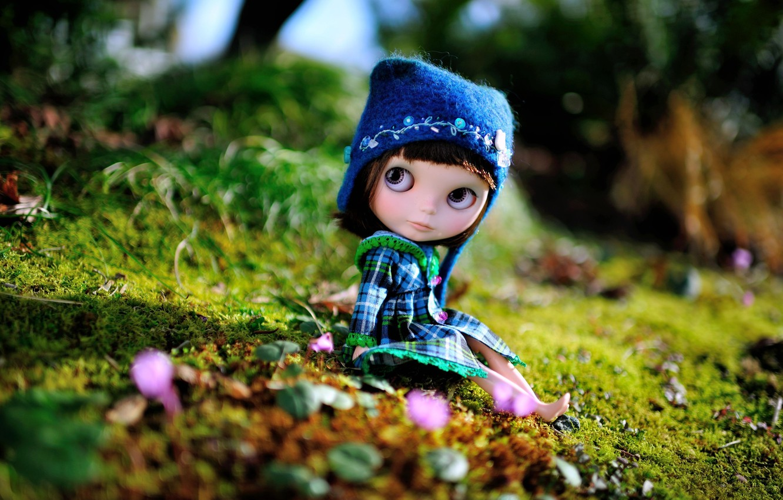 Photo wallpaper hat, toy, doll, sitting, cap
