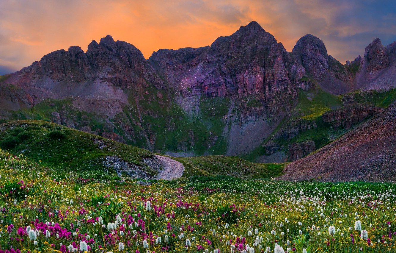 Photo wallpaper road, field, the sky, grass, sunset, flowers, mountains, Landscapes, Colorado