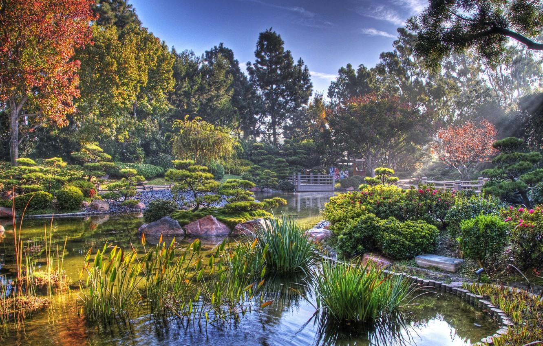 Photo wallpaper pond, Japan, Japanese garden