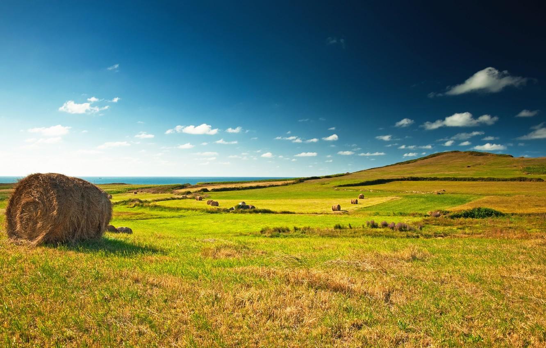 Photo wallpaper field, the sky, clouds, landscape, stack, horizon, meadow, hay, green, blue, Green, field, landscape, village, …
