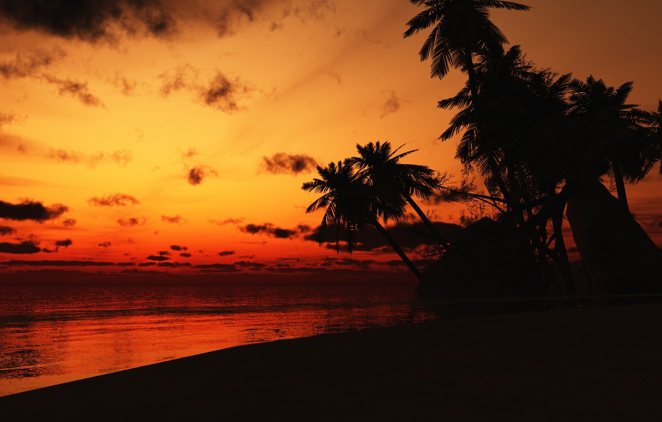 Photo wallpaper sea, clouds, sunset, palm trees, shore, the evening, Costa Rica