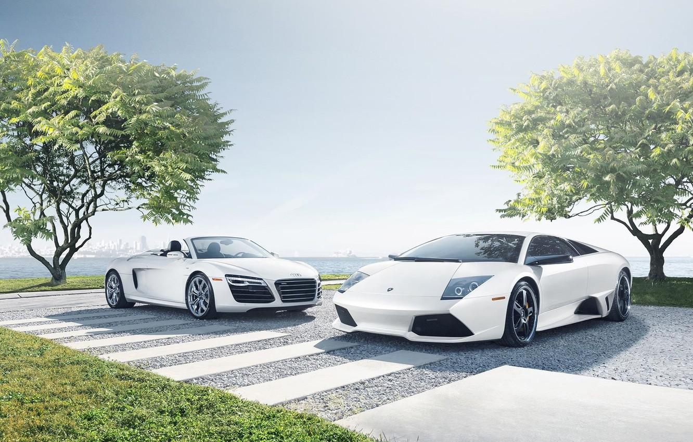 Photo wallpaper Audi, Lamborghini, Sky, Grass, Sun, Murcielago, White, Supercars, Spider, Trees, LP640-4
