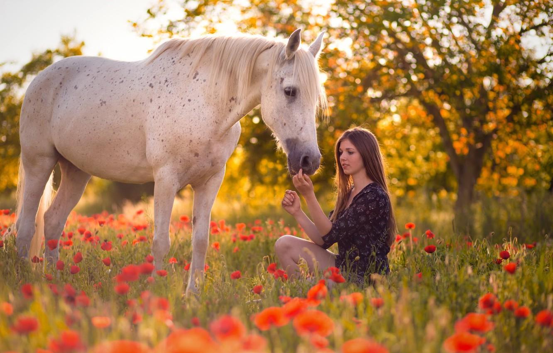 Photo wallpaper summer, girl, horse, Maki