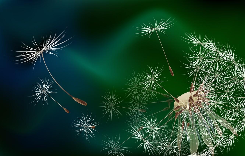 Photo wallpaper dandelion, that blew, who