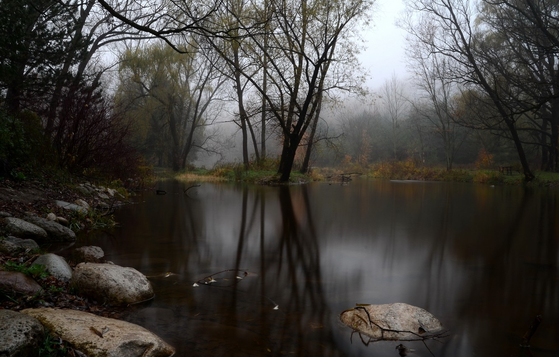 Photo wallpaper autumn, forest, fog, lake, stones