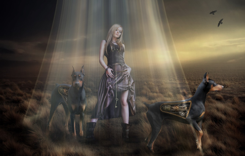 Photo wallpaper dogs, look, mechanism, robots, key, art, 3D. girl, Dobermans, fantasmogoriya