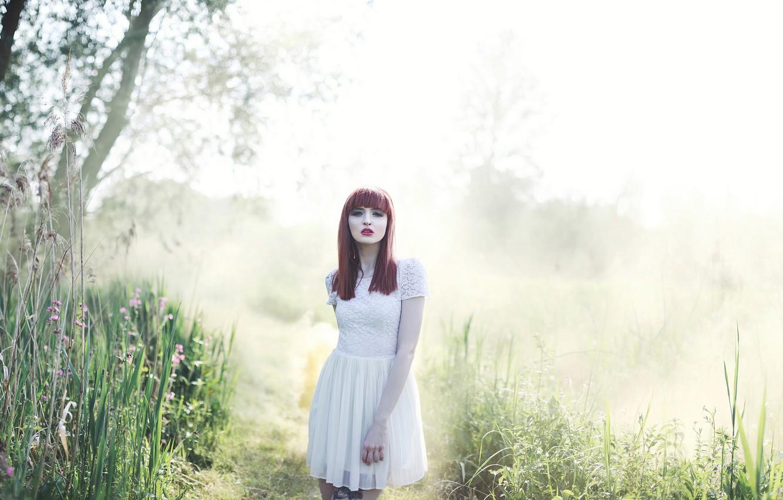 Photo wallpaper nature, redhead, Morning mist