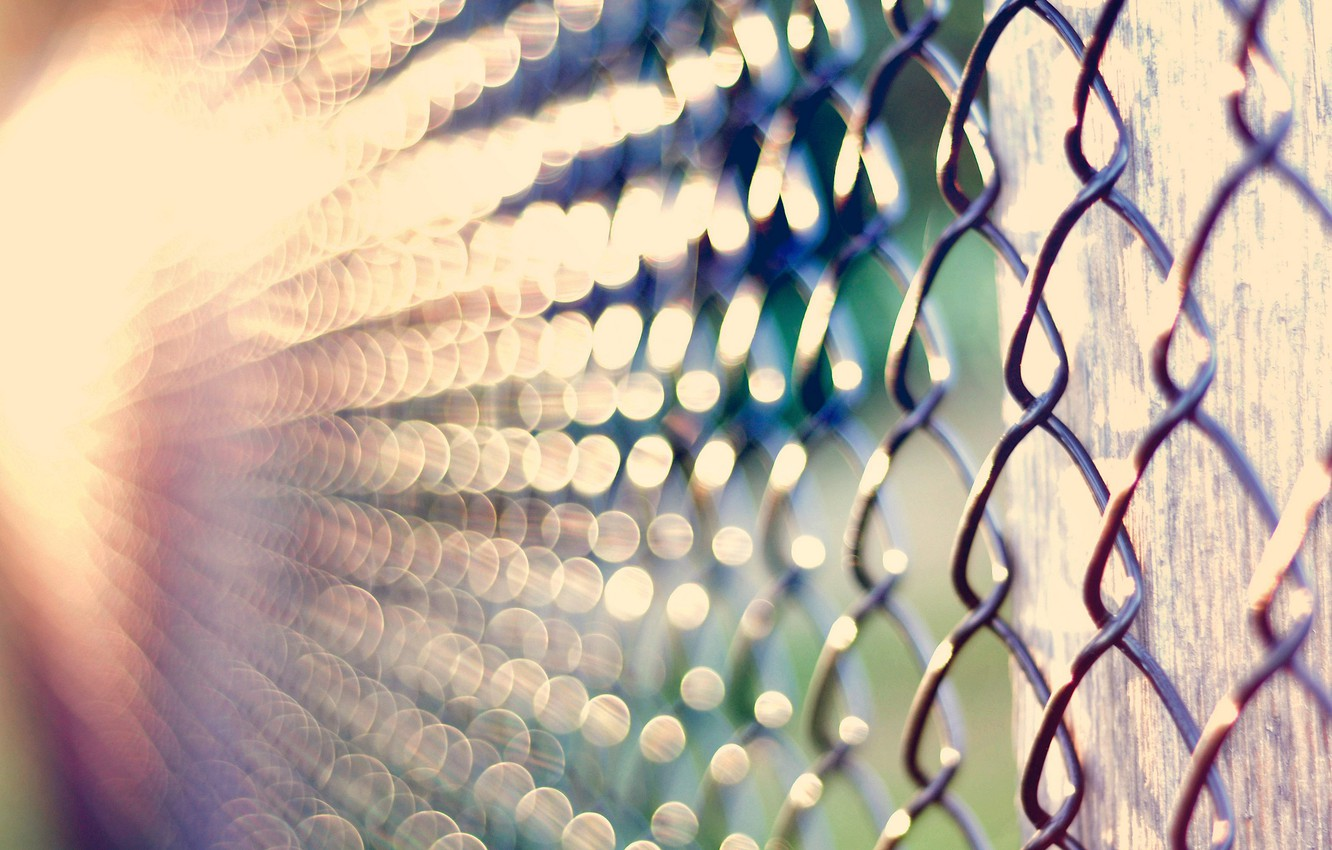 Photo wallpaper macro, light, glare, mesh, bokeh, netting