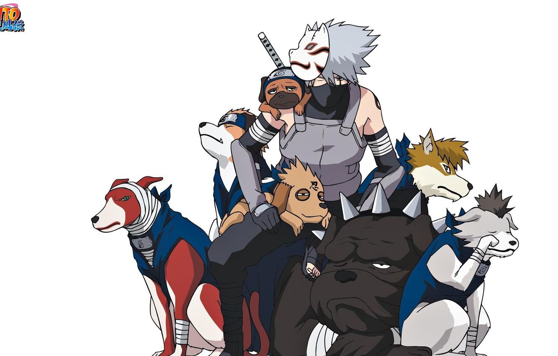 Photo wallpaper game, Naruto, Hunter, anime, dog, man, tatoo, ninja, Sharingan, mask, Uchiha, manga, shinobi, Kakashi, Hatake, …