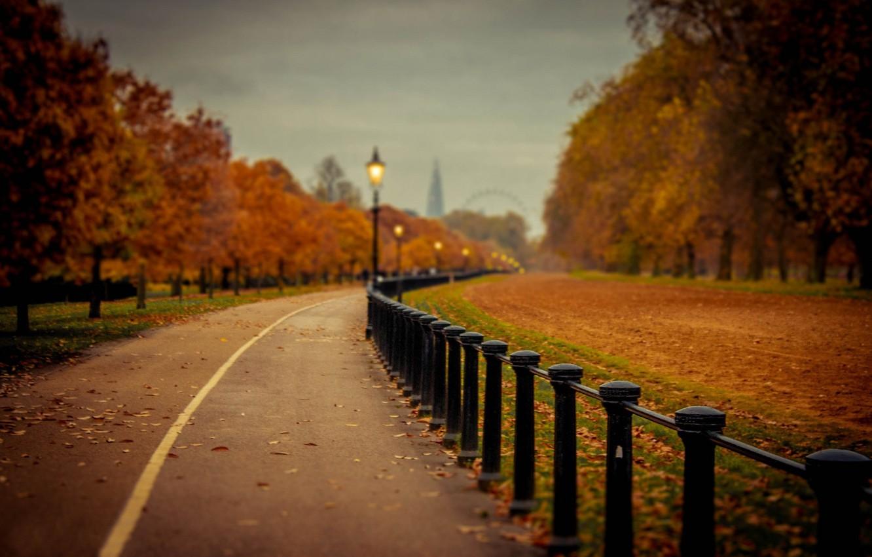 Photo wallpaper road, autumn, leaves, trees, nature, Park, colors, colorful, road, trees, nature, park, autumn, leaves, walk, …