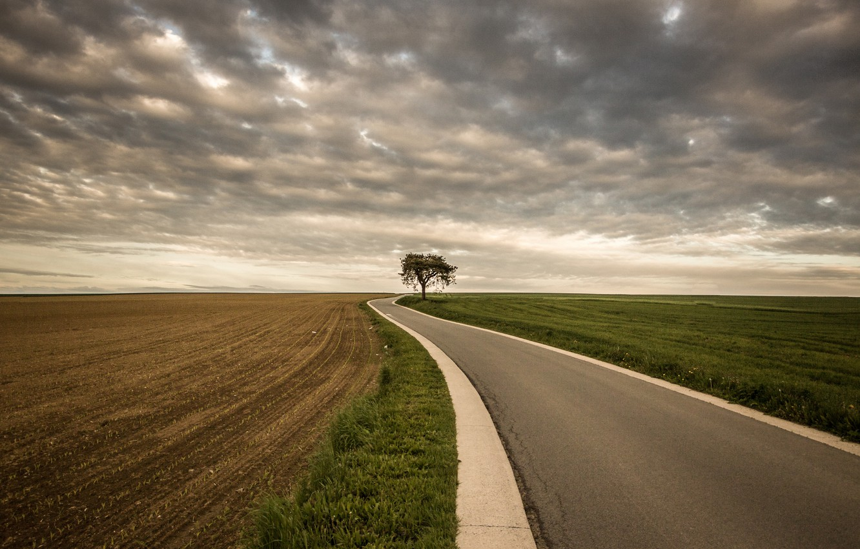 Photo wallpaper road, field, tree, storm, gray clouds