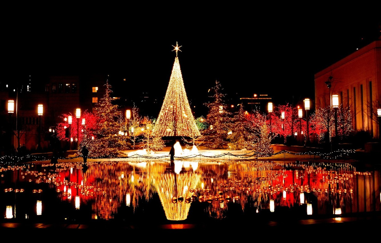 Photo wallpaper water, the city, lights, reflection, area, tree, garland, night