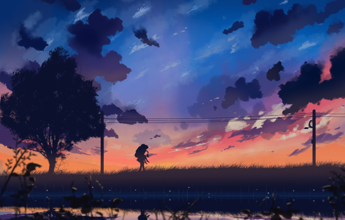 Photo wallpaper the sky, girl, clouds, sunset, nature, wire, anime, art, guy, two, dias mardianto, donsaid