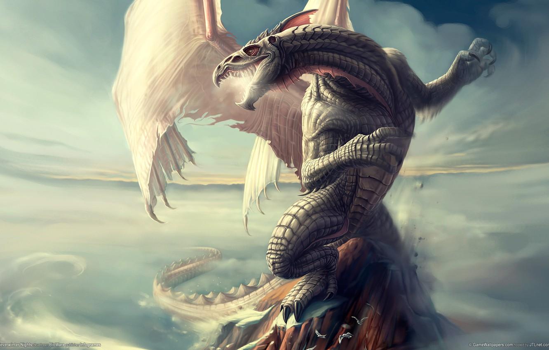 Photo wallpaper dragon, scales, neverwinter nights