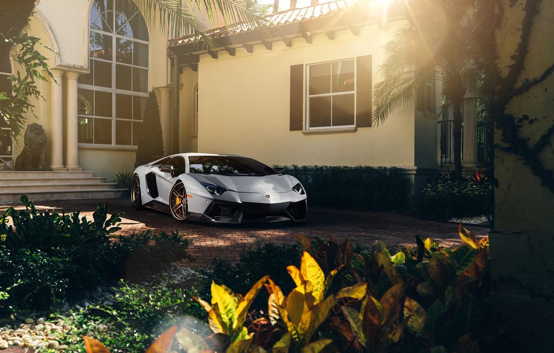 Photo wallpaper Lamborghini, Front, Sun, White, Matte, Tuning, LP700-4, Aventador, Supercar, Wheels, ADV.1
