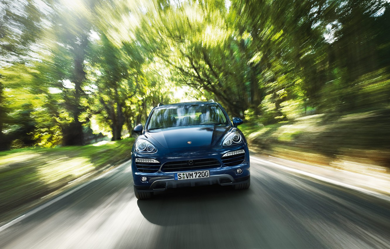 Photo wallpaper forest, speed, Porsche Cayenne