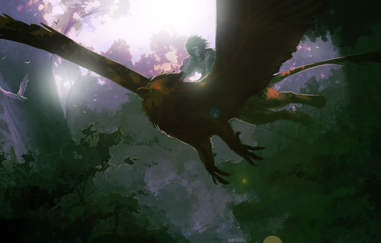 Photo wallpaper forest, birds, nature, anime, art, guy, Griffin, amsbt