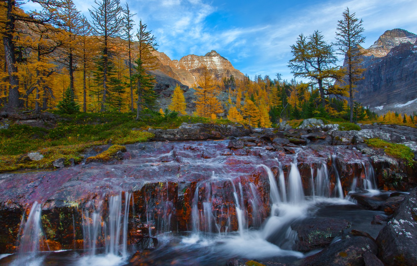 Photo wallpaper autumn, forest, trees, mountains, river, stones, waterfall, Canada, British Columbia, Canada, thresholds