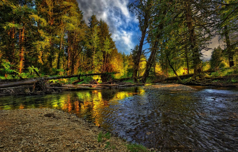 Photo wallpaper autumn, forest, landscape, nature, river, forest, river, landscape, nature, beautiful, autumn, cool, nice