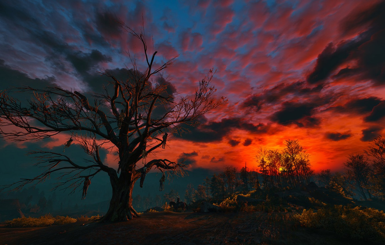 Photo wallpaper the sky, clouds, night, tree, The Witcher, gallows, The Witcher 3:Wild Hunt