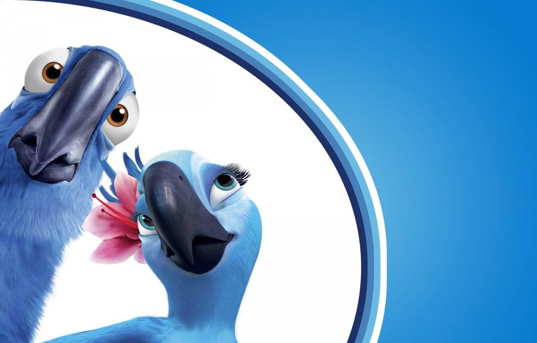 Photo wallpaper flower, look, birds, background, blue, cartoon, surprise, beak, pair, parrots, Ara, Rio, darling, jewel, Rio …