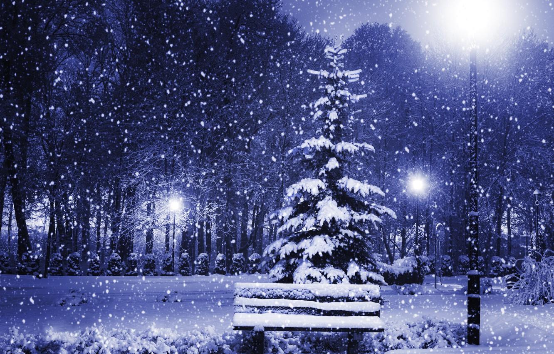 Photo wallpaper winter, light, snow, trees, bench, nature, city, tree, New year, light, Nature, new year, trees, …