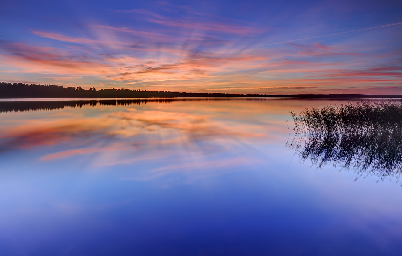 Photo wallpaper forest, the sky, grass, water, clouds, trees, sunset, orange, lake, surface, reflection, the evening, Sweden, …
