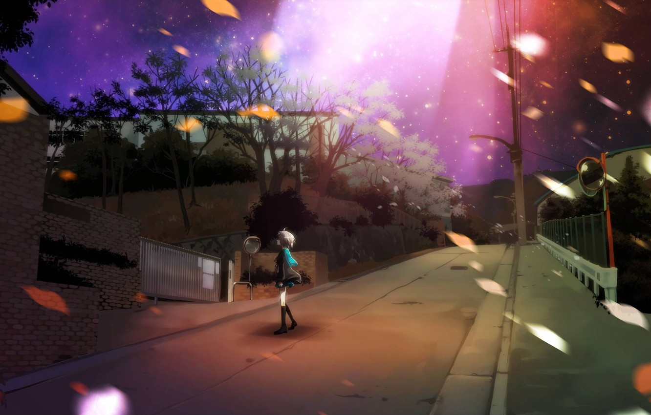 Photo wallpaper road, the sky, leaves, stars, night, street, nagato yuki, suzumiya haruhi no yuutsu