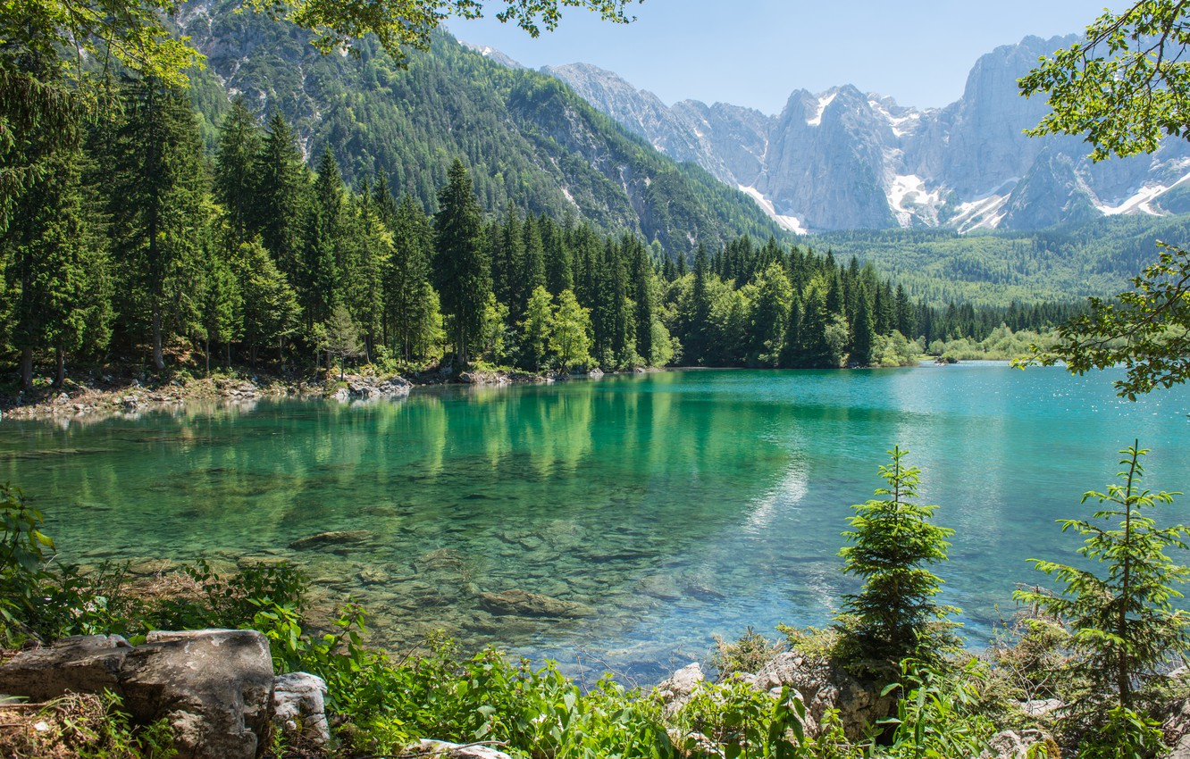 Photo wallpaper forest, mountains, nature, lake, tree, forest, nature, mountains, lake, tree