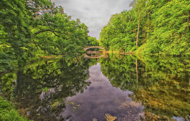 Photo wallpaper forest, the sky, trees, bridge, lake, Park, river