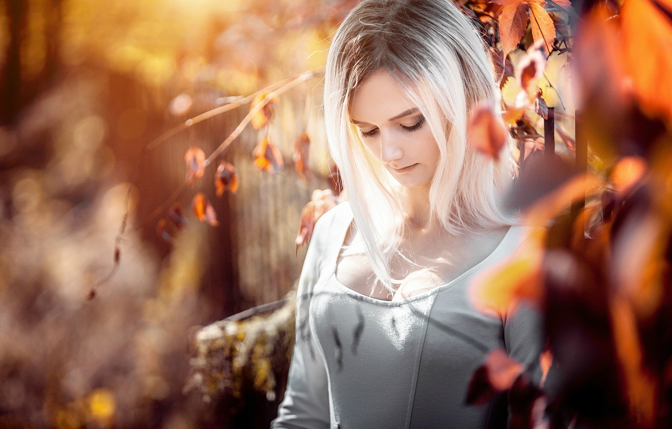 Photo wallpaper autumn, chest, look, leaves, nature, sexy, pose, sweetheart, Girl, dress, blonde, girl, sexy, beautiful, dress, …