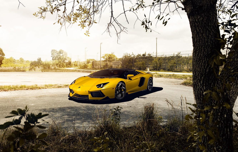 Photo wallpaper Roadster, Lamborghini, Front, Vorsteiner, Yellow, LP700-4, Aventador, Supercar