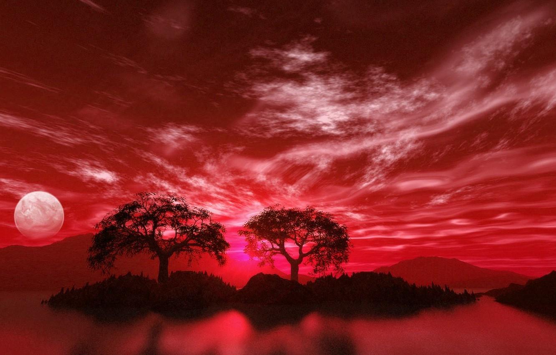 Photo wallpaper sea, trees, Phanar :-), the moon, street, pharmacy, pink