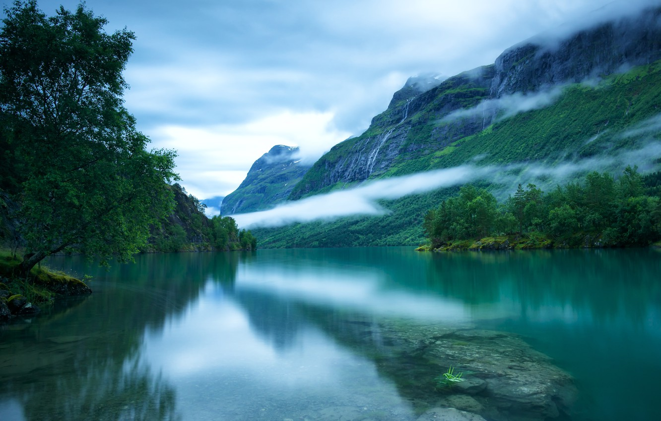 Wallpaper The Sky Clouds Trees Fog Surface Stones The