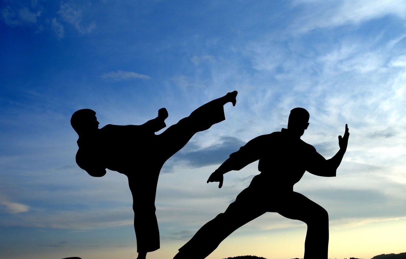 Photo wallpaper The sky, Sport, Battle, Wallpaper, Shadows, Blow, Fighters, The fight, Silhouette, Martial arts, Karate