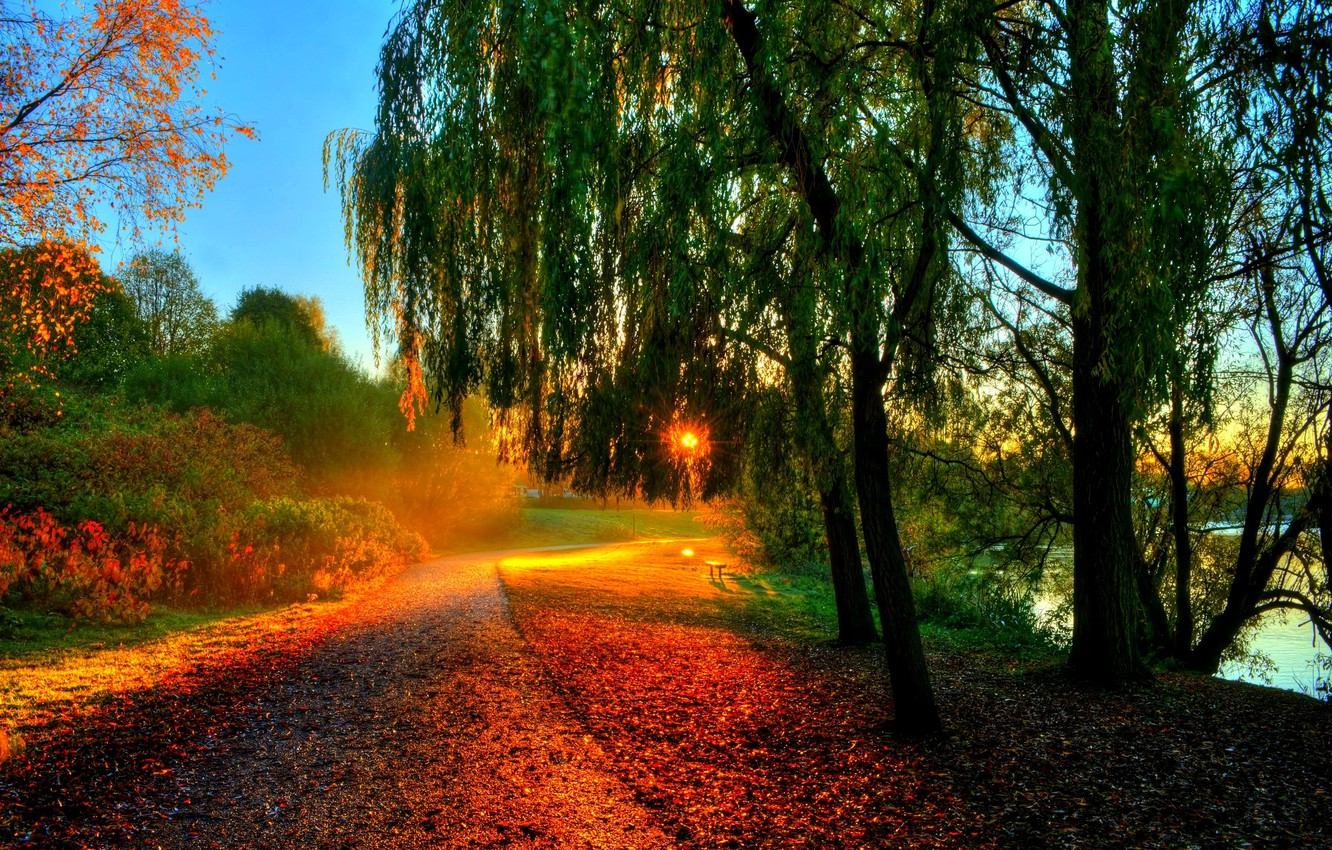 Photo wallpaper autumn, forest, leaves, water, the sun, rays, trees, sunset, bench, nature, river, hdr, walk, forest, …