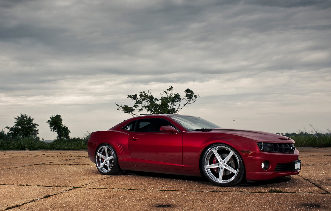 Photo wallpaper trees, red, red, Chevrolet, side view, chevrolet, the bushes, camaro ss, Camaro SS