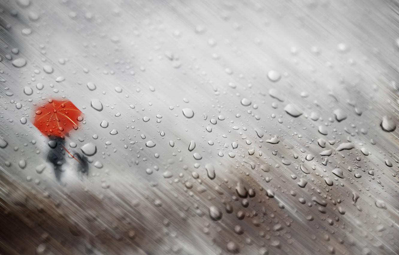 Photo wallpaper autumn, glass, girl, drops, rain, dog, umbrella, silhouettes