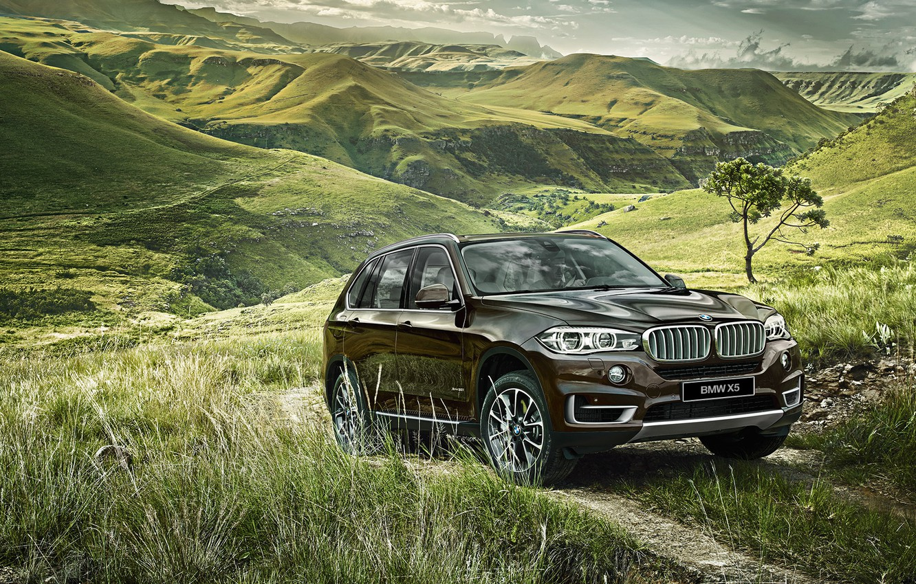 Photo wallpaper grass, nature, the slopes, BMW, BMW, 2015, F15, the hill