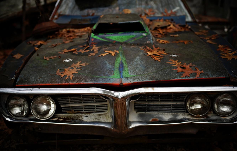 Photo wallpaper leaves, Pontiac, muscle car, Firebird